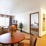 Foto van Holiday Inn Express Hotel & Suites Mattoon