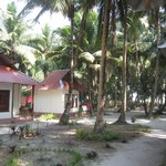Photo of Cross Bill Beach Resort