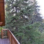 Bilde fra Alpine Aria Chalet Bed and Breakfast