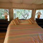 The comfortable beds in the tent