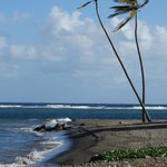Black sand beach near the Golden Lemon