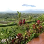 Foto de Great Mountain Views Villa Resort