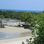 Mwazaro Beach Mangrove Lodge照片