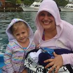 Fun boat ride over to dolphins