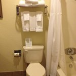 Foto van Staybridge Suites San Angelo
