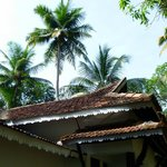 Vembanad Houseの写真