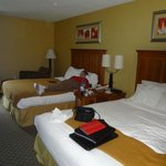 Foto de Holiday Inn Express Hurricane Mills (Waverly)