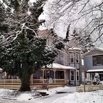 Φωτογραφία: Springfield House Bed and Breakfast