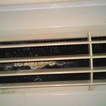 mold in ac/heater unit #2207