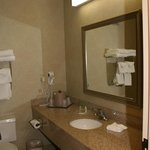 Φωτογραφία: Holiday Inn St. Joseph - Riverfront / Hist. Dis