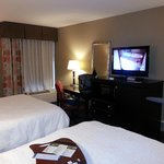 Photo de Hampton Inn Asheville - I-26 Biltmore Square