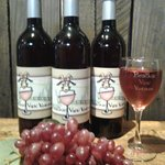 One of our many wines - Wild Mountain Rose