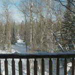 Silent Sport Lodge Bed and Breakfast Foto