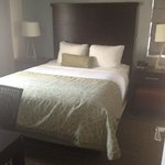 Bilde fra Staybridge Suites San Francisco Airport