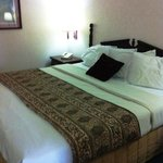 Americas Best Value Inn Calera의 사진
