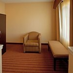 Foto di Holiday Inn Express Hotel & Suites Greenville Airport
