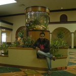 صورة فوتوغرافية لـ ‪Holiday Inn Corpus Christi Airport Hotel & Conference Center‬