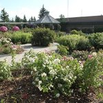 Photo of Olds College Botanic Garden