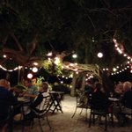 Dining under the Banyan Trees