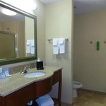 Hampton Inn Greenvilleの写真