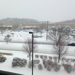 Foto de Courtyard by Marriott Boston Natick