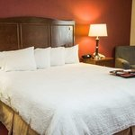 Hampton Inn Lexington/Georgetown resmi