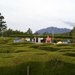 One of the smaller mazes, and the mini village