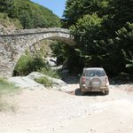 4 WD Tour am Pilion