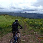Tasting The Road- Bike Tours & Original Peruvian Food