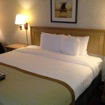 Foto di Baymont Inn & Suites Madison West