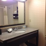Photo of Hampton Inn and Suites Detroit/A