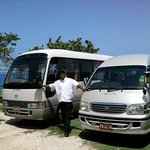 Phillip's Jamaica Tours