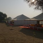 Foto de Pushkar Royal Safari Camp
