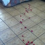 Petals On the floor leading to the bed