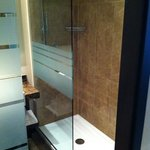 only standing shower compare to the old room which has bath tub