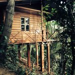 Photo de Polwaththa Eco Lodges