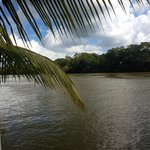 Belize River from outdoor seating area
