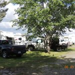 Foto de 100 Mile Motel and RV Park