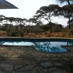 Photo of Tandala Tented Camp