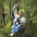 Exploring the natural forest by air!