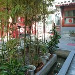 Foto de Happy Dragon Courtyard Hostel