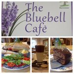 The Bluebell Cafe at Barrowmore