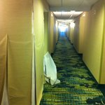 Foto SpringHill Suites Richmond Virginia Center