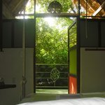 Morning View from the hanging bed in Birdhouse Eco-suite $89 usd.