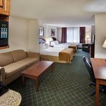 Φωτογραφία: Holiday Inn Express Hotel & Suites Bellevue