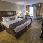 Foto di BEST WESTERN PLUS Fort Worth South Hotel
