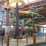 Timber Ridge Lodge & Waterpark resmi