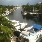 Foto de Courtyard by Marriott Key Largo