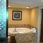 Foto de Hampton Inn & Suites Chicago North Shore/Skokie