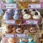 New housemade specialty cupcakes